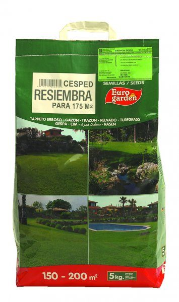 Cesped Resiembra 5 Kg
